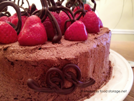 Food Storage Chocolate Angel Food Cake Recipe